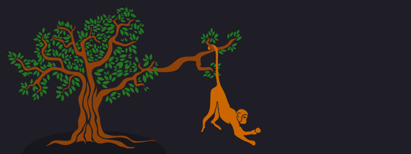 Monkey holding Branch